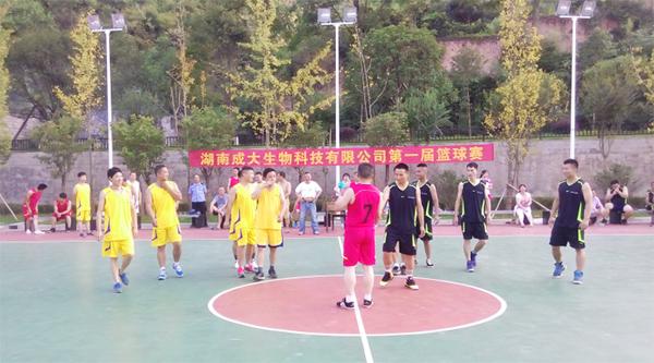 2016.7  成大公司第一届职工篮球赛  安化
